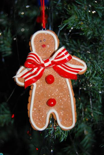gingerbread man-DSC_0912 (2)- jpkwitter
