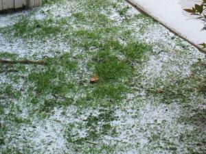 IMG_2804 snow 2014