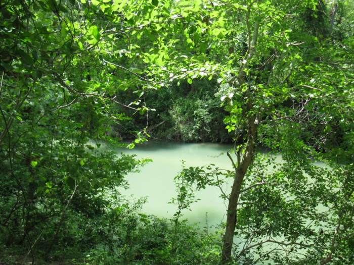 San Marcos River above Fentress, Texas